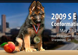 German Shepherd dog show Southeast Regional Conformation Show and Breed Survey